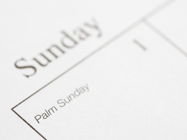 日曜日の記述