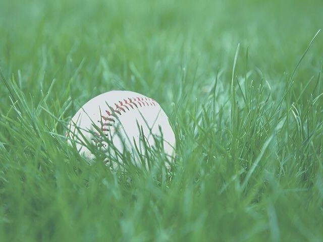 工場がある地区での草野球に強制参加